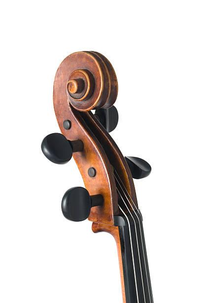 Violin isolated on white:スマホ壁紙(壁紙.com)
