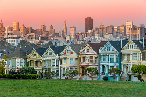 Downtown District「Alamo square and Painted Ladies with San Francisco skyline」:スマホ壁紙(11)