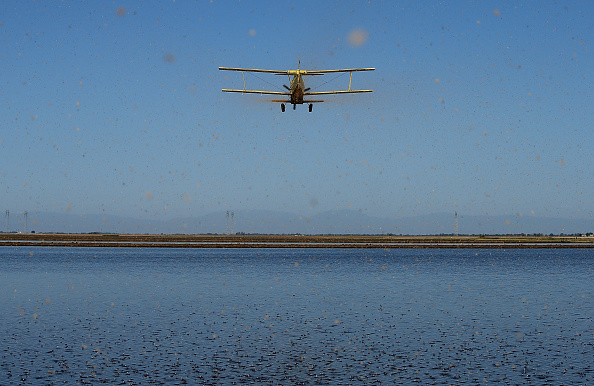 Propeller Airplane「Plantings Of Water-Intensive Rice Crops Dwindle During State's Severe Drought」:写真・画像(0)[壁紙.com]