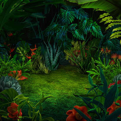 Rainforest「Abstract night jungle background」:スマホ壁紙(3)