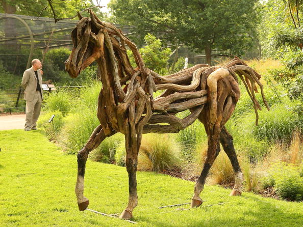 Oak Tree「Recycled Sculpture Show Opens At London Zoo」:写真・画像(14)[壁紙.com]