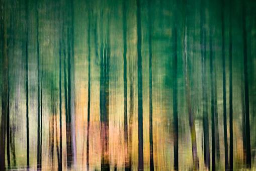 Salzkammergut「Reflections of treetops in Lake Gosausee near Gosau, Salzkammergut, Austria」:スマホ壁紙(19)