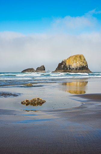 Cannon Beach「Reflections caught on a wet beach; Cannon Beach, Oregon, United States of America」:スマホ壁紙(16)