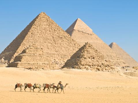 Camel Family「Pyramids of Giza」:スマホ壁紙(19)