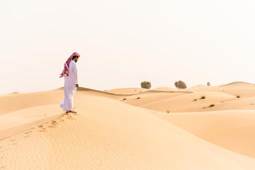 仕事運「arabic sheik walking on the desert」:スマホ壁紙(0)