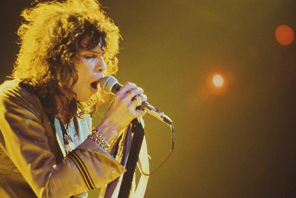 歌う「Aerosmith Singer」:写真・画像(6)[壁紙.com]