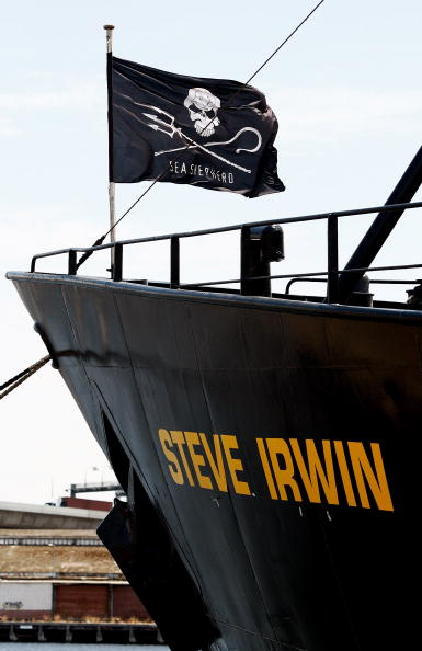 "Environmental Conservation「Sea Shepherd Renames Ship ""Steve Irwin""」:写真・画像(0)[壁紙.com]"
