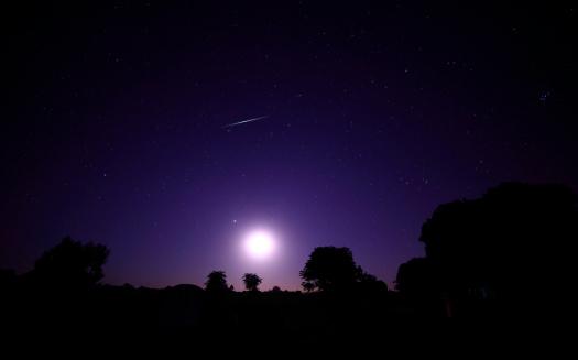 紫の夜空と星と木の影