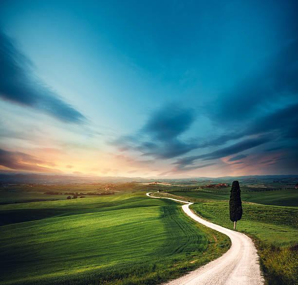 Tuscany Road:スマホ壁紙(壁紙.com)