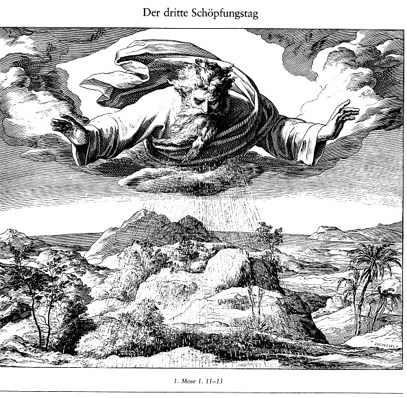 Mythology「The Third Day of Creation (From Die Bibel in Bildern), 1852-1860」:写真・画像(15)[壁紙.com]