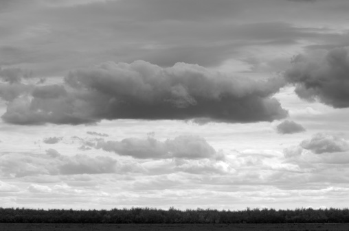 Earth Goddess「A black-and-white cloudscape over central California.」:スマホ壁紙(11)