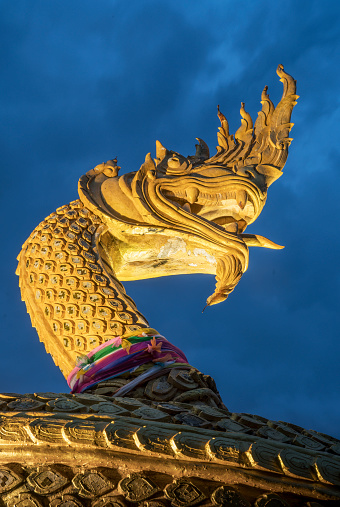 Dragon「Ornate golden snake statue under cloudy sky」:スマホ壁紙(10)