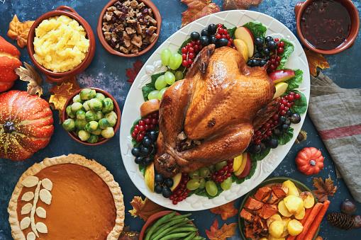 Turkey - Bird「Stuffed Turkey for Thanksgiving Holidays」:スマホ壁紙(15)