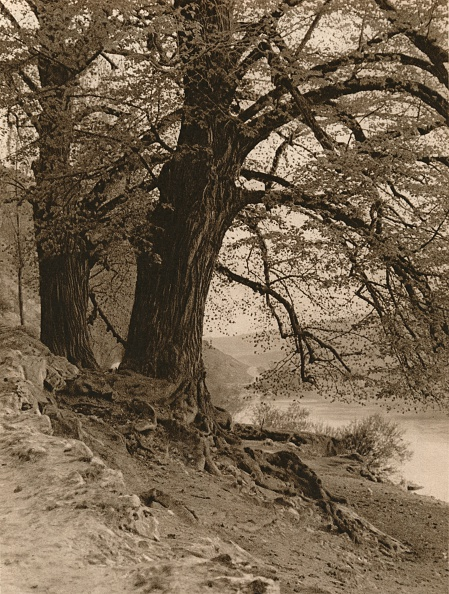 Riverbank「In the Valley of the Nab, 1931」:写真・画像(10)[壁紙.com]