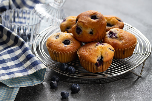 Cupcake「Homemade vanilla muffins with blueberries on a dark concrete background」:スマホ壁紙(14)