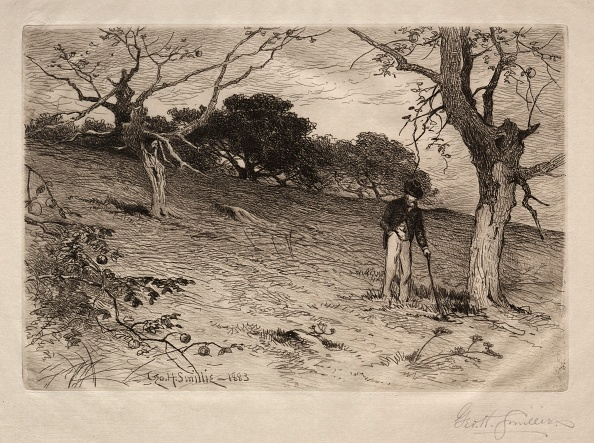 Etching「An Old New England Orchard」:写真・画像(10)[壁紙.com]