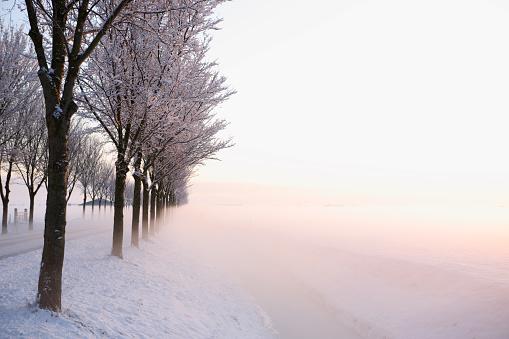 Country Road「High Key Winter Sunrise」:スマホ壁紙(15)