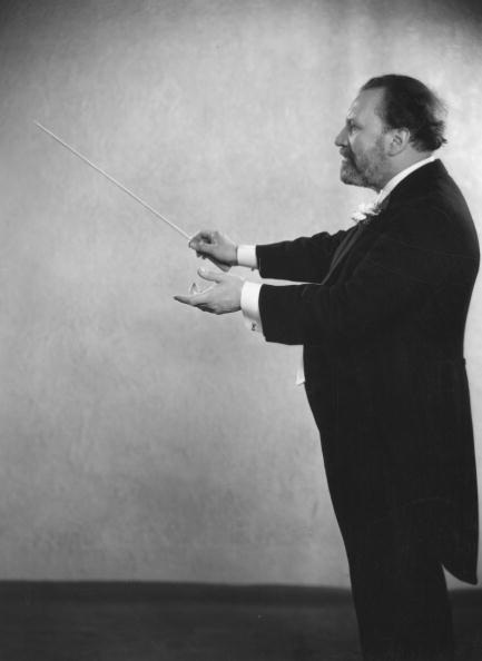 Conductor's Baton「Wood Conducting」:写真・画像(9)[壁紙.com]