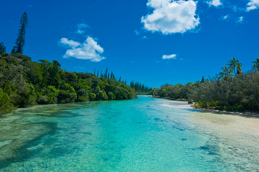 French Overseas Territory「Bay de Oro, Ile des Pins, New Caledonia, South Pacific」:スマホ壁紙(13)