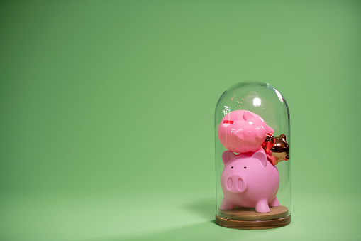 North Holland「Bell jar with a small group of piggy banks inside」:スマホ壁紙(16)