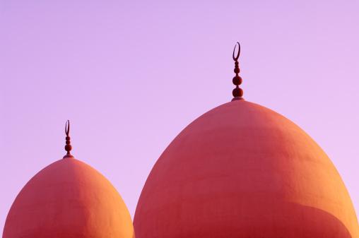 三日月形「ドームのモスク」:スマホ壁紙(14)