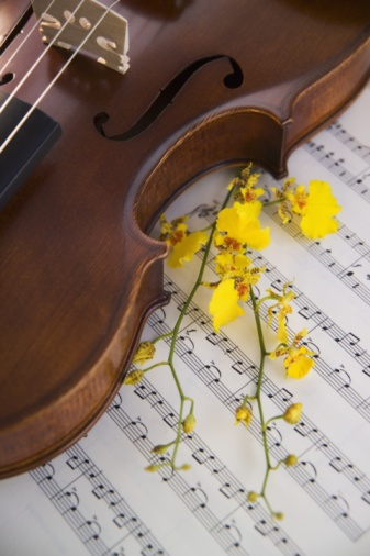 Violin「Detail of a violin flowers and a sheet of music」:スマホ壁紙(14)