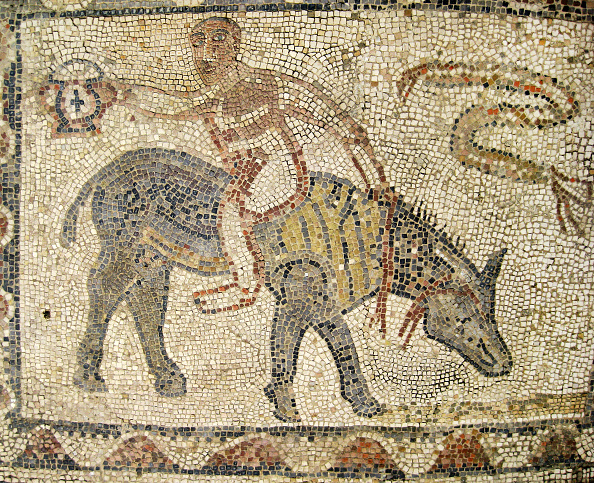 Mosaic「Detail Of A Mosaic In The Ruins Of Volubilis,Morocco, An Important Outpost Of The Roman Empire Found Artist: Werner Forman.」:写真・画像(11)[壁紙.com]