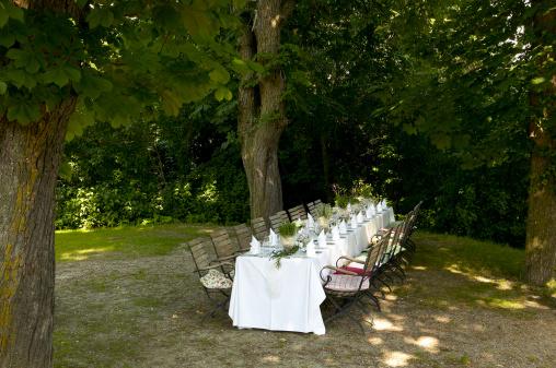 結婚「Austria, Rosenburg, festive decorated table outdoors」:スマホ壁紙(1)