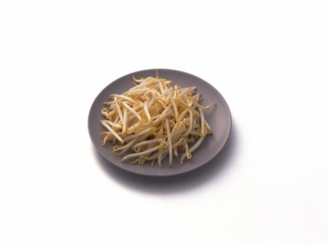 Bean Sprout「Bean sprouts on plate, high angle view」:スマホ壁紙(8)