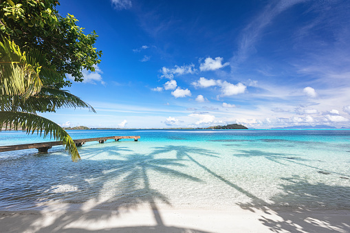 Lagoon「Bora Bora Island Beautiful Beach Jetty French Polynesia」:スマホ壁紙(17)