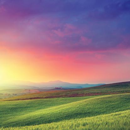 Wildflower「Rainbow dawn in Tuscany」:スマホ壁紙(19)