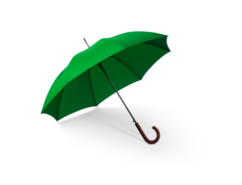 Rain「Green Umbrella w/Clipping Path」:スマホ壁紙(16)