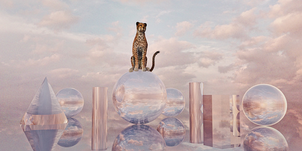 Animals Hunting「Cheetah sits on sphere surrounded by glass shapes in surreal cloudy landscape」:スマホ壁紙(18)