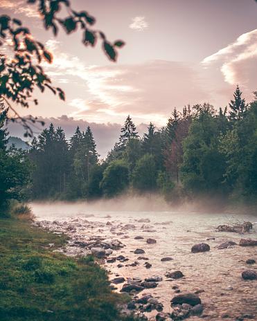 Wilderness Area「Beautiful river on a misty morning」:スマホ壁紙(18)