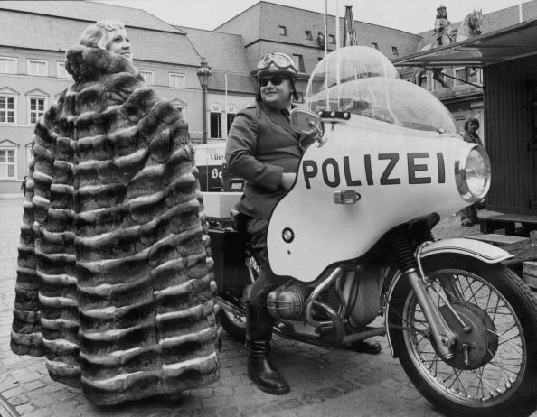Chinchilla - Rodent「Polizei Protection」:写真・画像(4)[壁紙.com]
