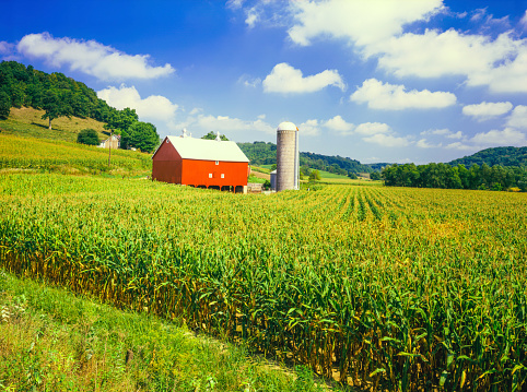 Farm「Wisconsin farm and corn field」:スマホ壁紙(12)