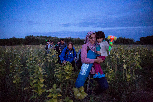 Hungary「Refugees Are Smuggled Past Authorities In Hungary」:写真・画像(12)[壁紙.com]