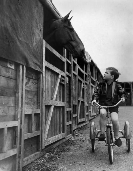 Barn「Mutual Curiosity」:写真・画像(17)[壁紙.com]