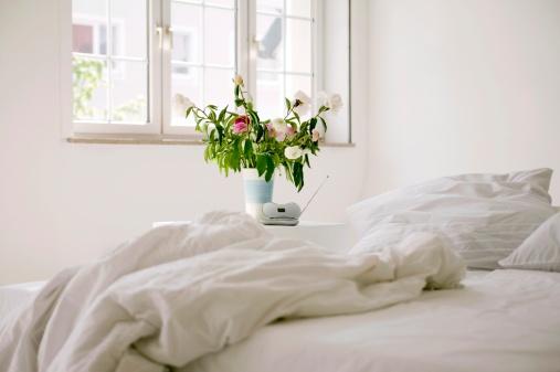Duvet「Bedroom」:スマホ壁紙(7)