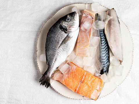 Sea Bream「Fresh fish and seafood arrangement on plate,  Fish, Seafood, Fishing Industry, raw fish fillet, raw fish mix」:スマホ壁紙(19)