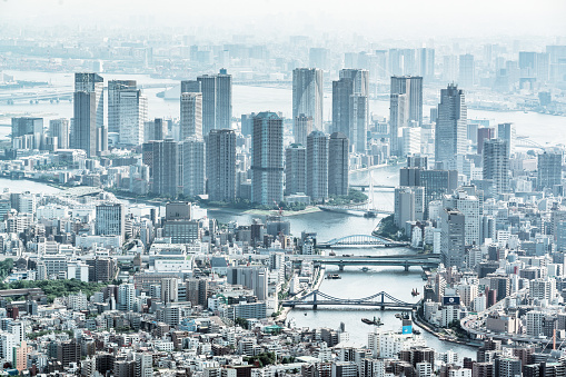 Tokyo Tower「Tokyo aerial panorama across skyscraper cityscape」:スマホ壁紙(15)