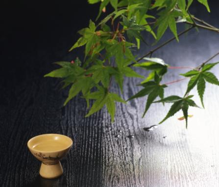 Sake「Sake and Japanese maple」:スマホ壁紙(8)
