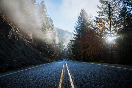 Fog「USA, Oregon, Klamath County, road in Crater Lake National Park」:スマホ壁紙(16)