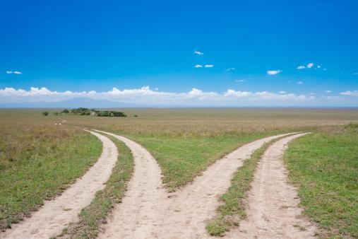 East Africa「Dividing roads, Serengeti fork junction」:スマホ壁紙(19)