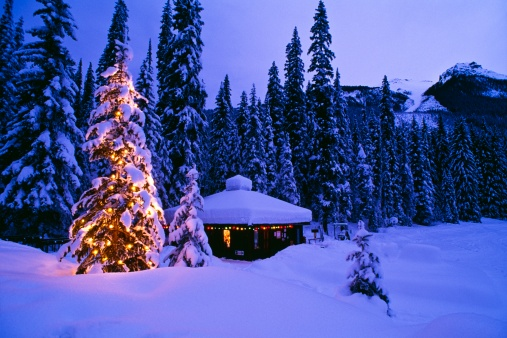 雪「Tree with Christmas lights, Emerald Lake, Yoho National Park, British Columbia, Canada」:スマホ壁紙(3)