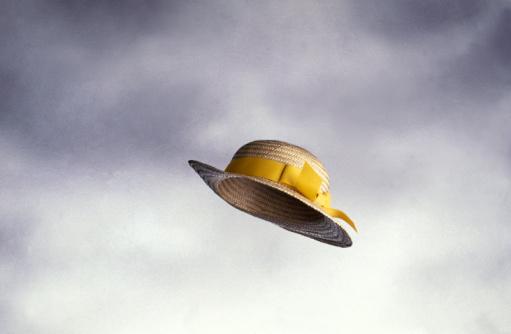 Straw Hat「Straw Hat Sailing Through The Air」:スマホ壁紙(17)