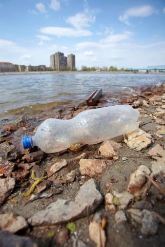 River「water pollution」:スマホ壁紙(16)