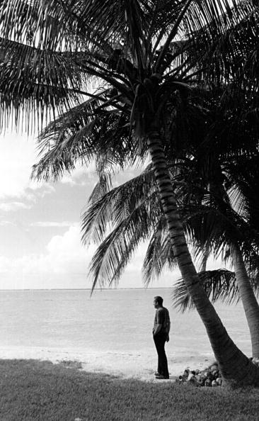 Environment「Richard Nixon in Key Biscayne」:写真・画像(18)[壁紙.com]