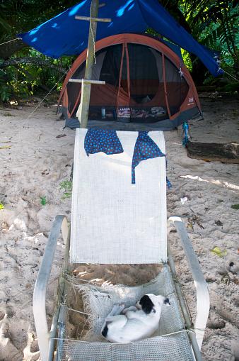 水着「Camping on the beach」:スマホ壁紙(6)