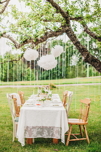 Wedding「Garden party arrangement with decorations hanging from tree.」:スマホ壁紙(6)